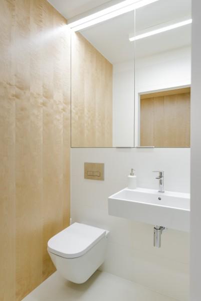skromna toaleta